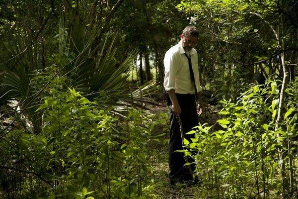 кадры и фото из фильма Поля