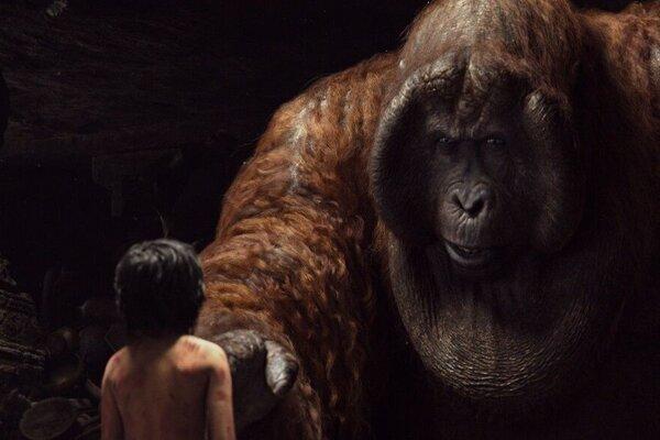 кадры и фото из фильма Книга джунглей