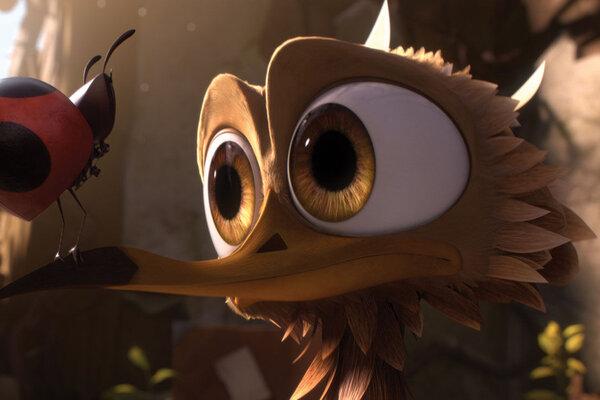 кадры и фото из фильма Махни крылом!