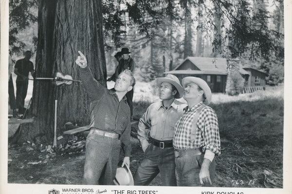 кадры и фото из фильма Большие деревья
