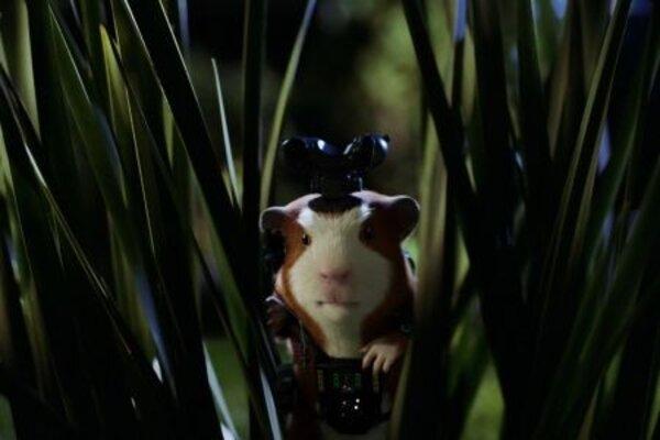 кадры и фото из фильма Миссия Дарвина