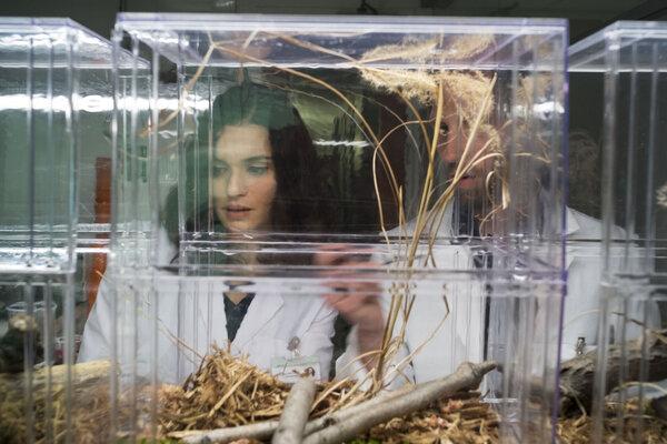 кадры и фото из фильма Бегущая от реальности