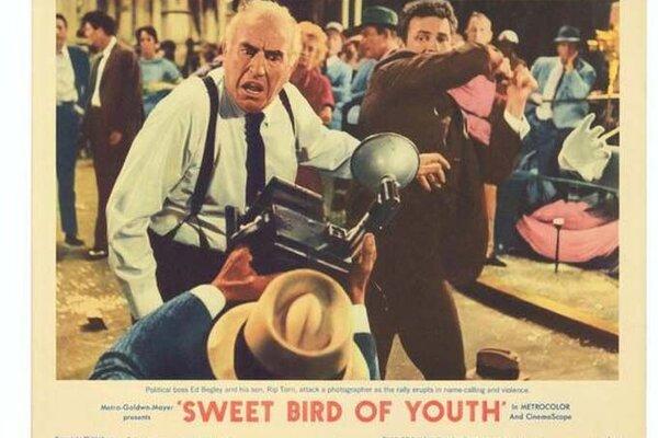 кадры и фото из фильма Сладкоголосая птица юности