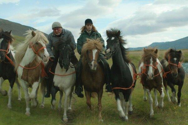 кадры и фото из фильма О лошадях и людях