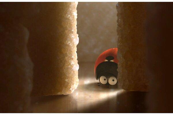кадры и фото из фильма Букашки 3D. Приключение в Долине муравьев