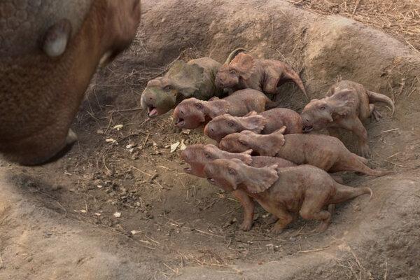 кадры и фото из фильма Прогулки с динозаврами 3D