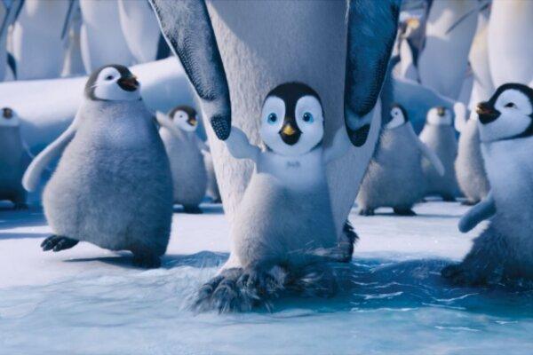 кадры и фото из фильма Делай ноги 2 в 3D