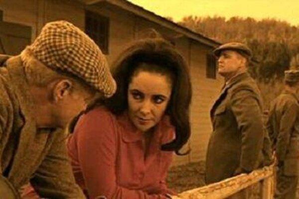 кадры и фото из фильма Блики в золотом глазу
