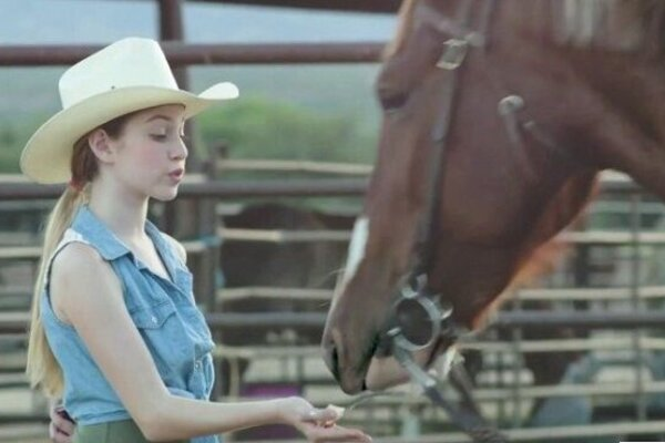 кадры и фото из фильма История одной лошадки