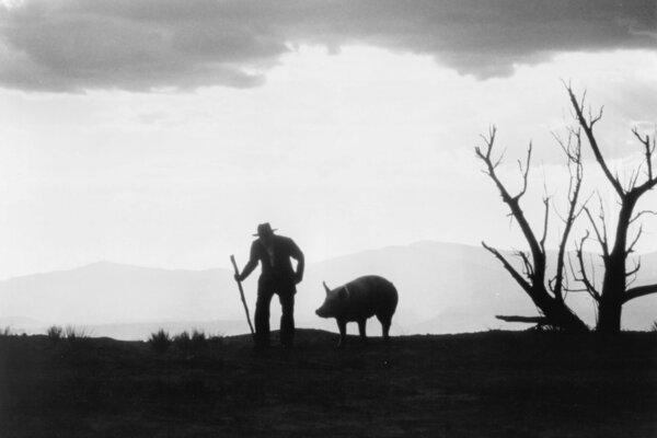 кадры и фото из фильма Война на бобовом поле Милагро