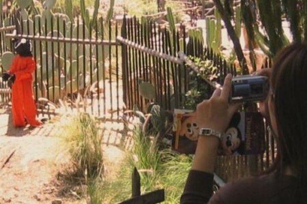 кадры и фото из фильма Выход через сувенирную лавку