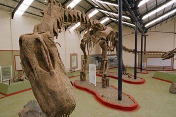 кадры и фото из фильма Динозавры 3D: гиганты Патагонии