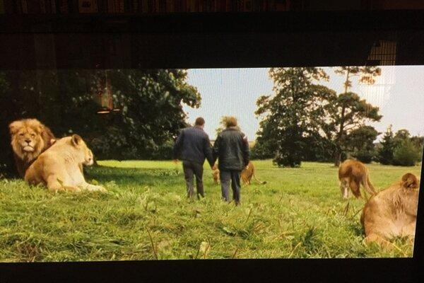 кадры и фото из фильма Отморозки