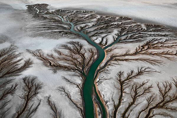 кадры и фото из фильма Водяной знак