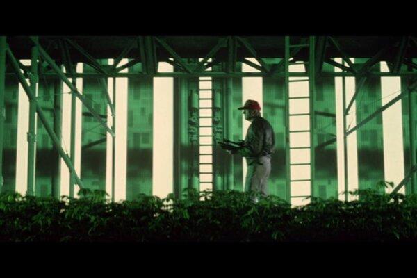 кадры и фото из фильма Чужая земля