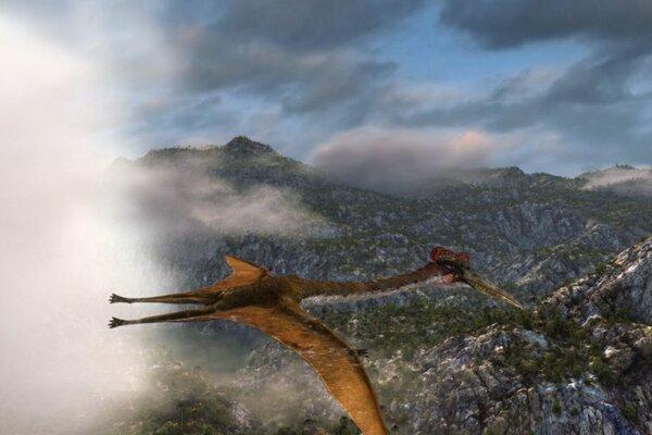 кадры и фото из фильма Крылатые монстры IMAX 3D