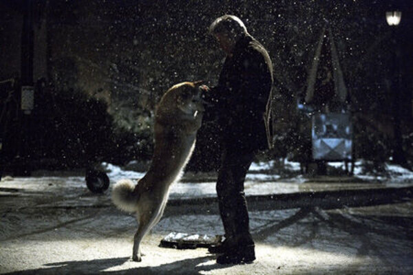 кадры и фото из фильма Хатико: самый верный друг