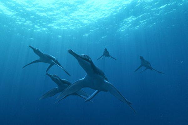 кадры и фото из фильма Чудища морей 3D