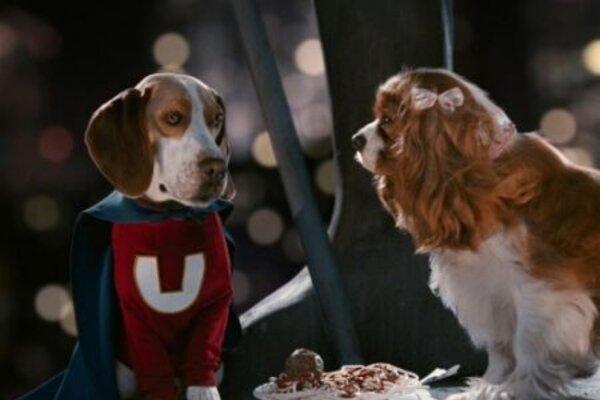 кадры и фото из фильма Суперпес