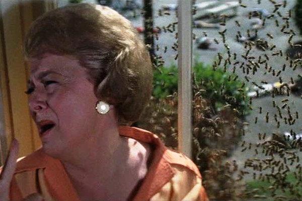 кадры и фото из фильма Рой