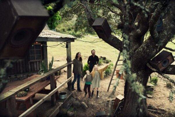 кадры и фото из фильма Охотник