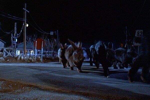 кадры и фото из фильма Ночь Лепсуса