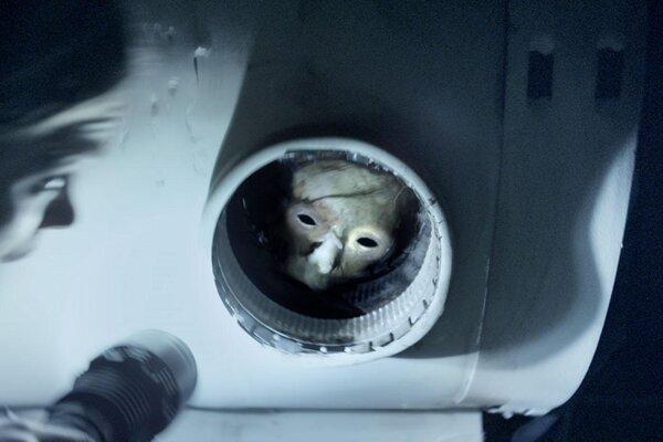 кадры и фото из фильма Секретный эксперимент 3D