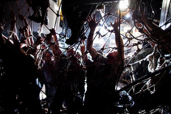 кадры и фото из фильма Репортаж: Апокалипсис