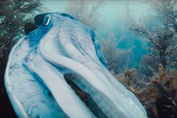 кадры и фото из фильма Путешествие времени