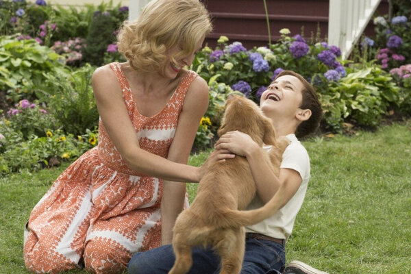 кадры и фото из фильма Собачья жизнь