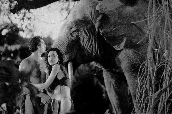 кадры и фото из фильма Тарзан и его подруга