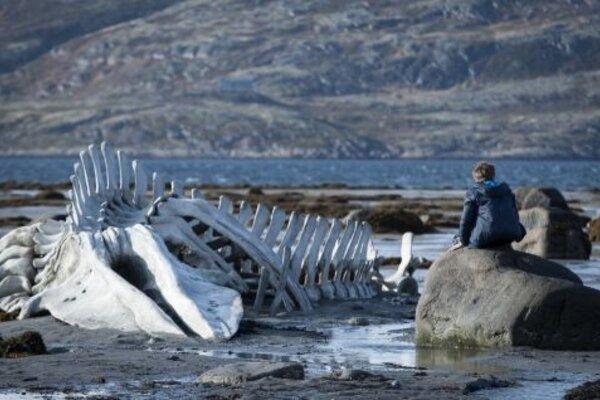 кадры и фото из фильма Левиафан