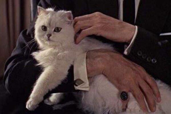 кадры и фото из фильма Из России с любовью