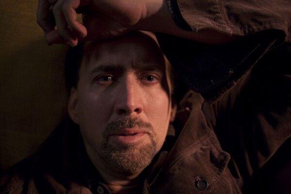 кадры и фото из фильма Голодный кролик атакует