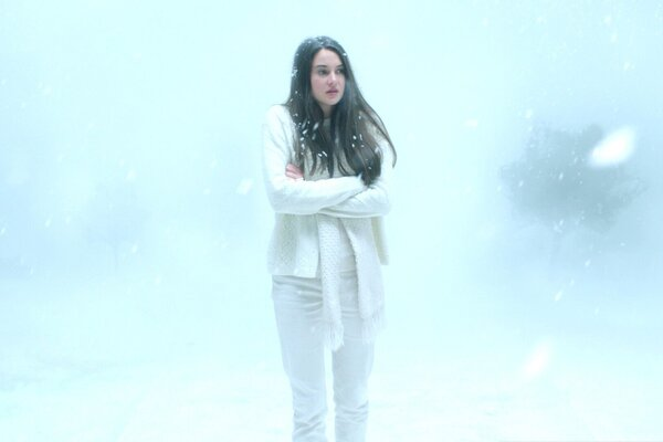 кадры и фото из фильма Белая птица в метели