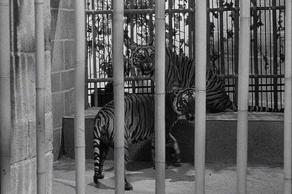 кадры и фото из фильма Призрак замка Моррисвиль