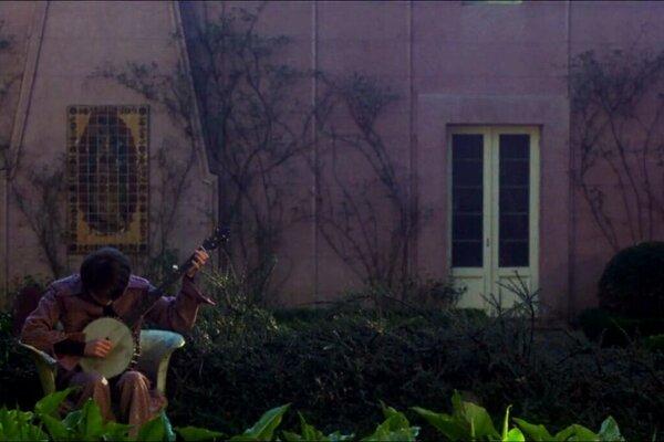 кадры и фото из фильма Гарольд и Мод