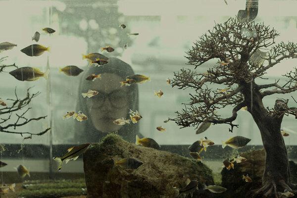 кадры и фото из фильма Рай