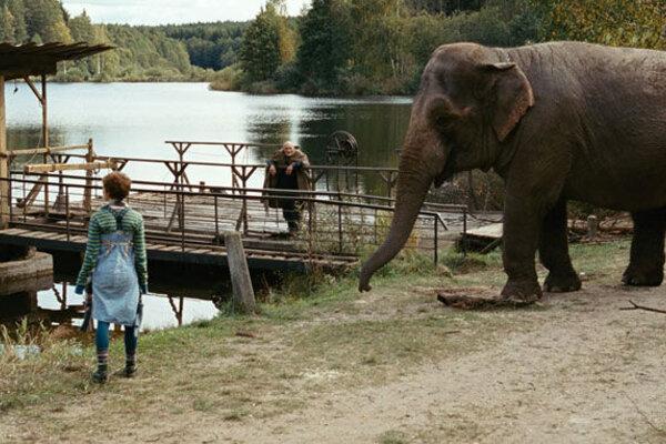 кадры и фото из фильма Слон