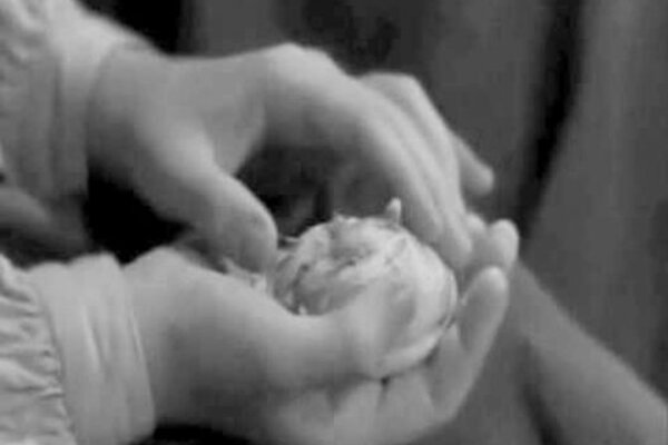 кадры и фото из фильма Сотворившая чудо