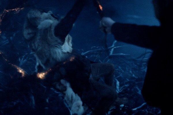 кадры и фото из фильма Затмение