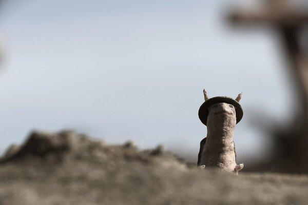 кадры и фото из фильма WW1 Uncut: War Worm