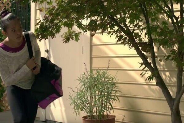 кадры и фото из фильма Гибби