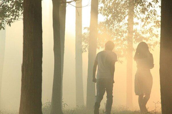 кадры и фото из фильма Норвежский лес