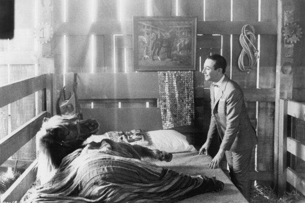 кадры и фото из фильма Коротышка - большая шишка