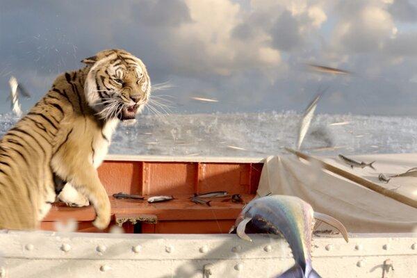 кадры и фото из фильма Жизнь Пи 3D