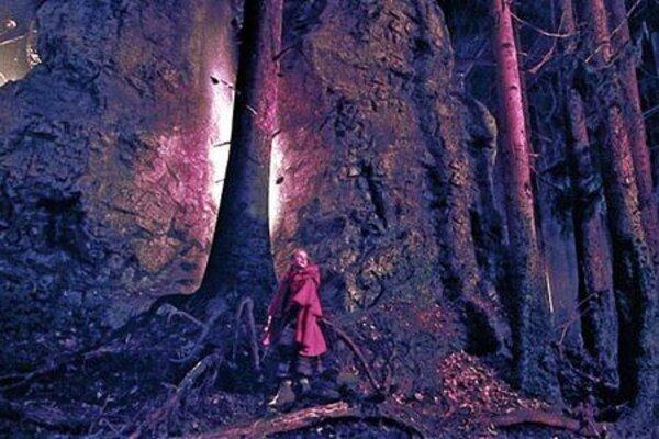 кадры и фото из фильма Братья Гримм