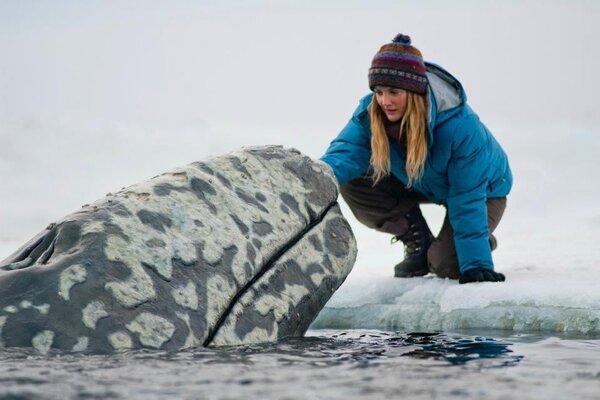 кадры и фото из фильма Все любят китов