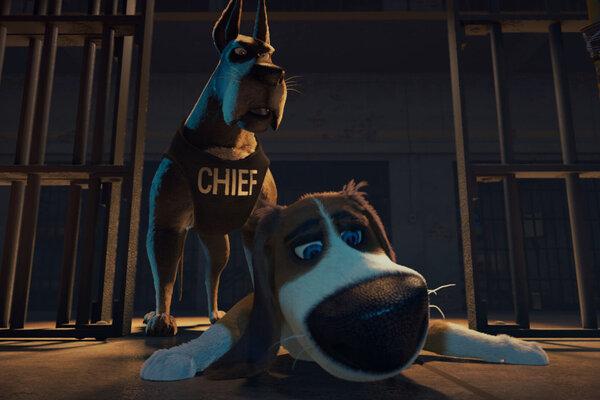 кадры и фото из фильма Большой собачий побег