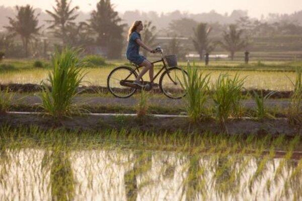 кадры и фото из фильма Ешь, молись, люби